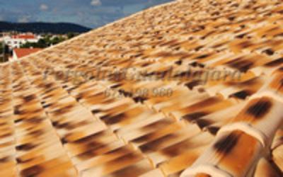 tejados-y-cubiertas-porches-de-madera (15)